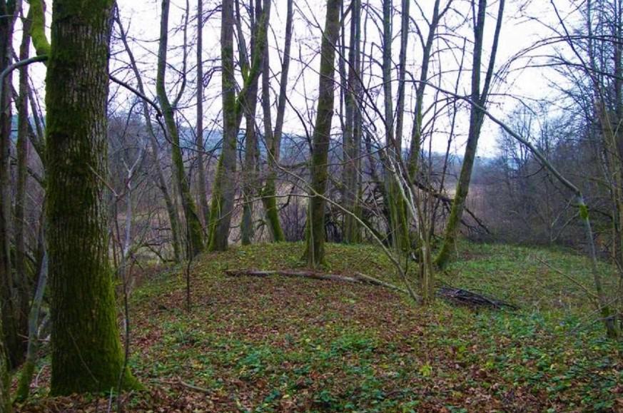 Į rytus nuo Jokūbavo miestelio, tarp Jokūbavo miško ir Minijos upės, plyti Šašaičių kaimo žemės.