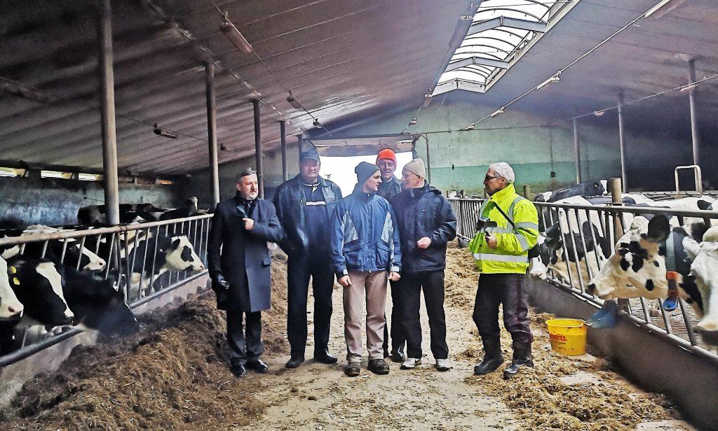 Kretingos ūkininkai Vacys Zieringis (pirmas iš dešinės), Rimantas Skiparius (antras iš dešinės), Mindaugas Šukys (antras iš kairės) Punske aplankė kelis nedidelius pieno ūkius.