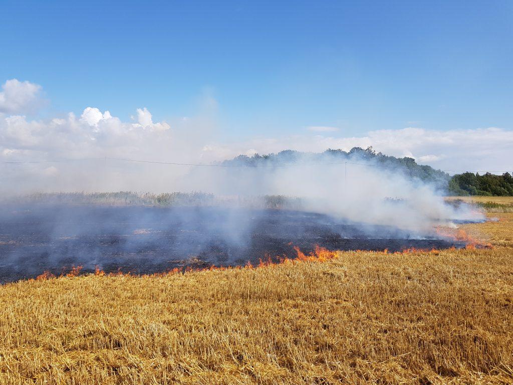 Kasmet itin daug gaisrų kyla atvirose teritorijose.