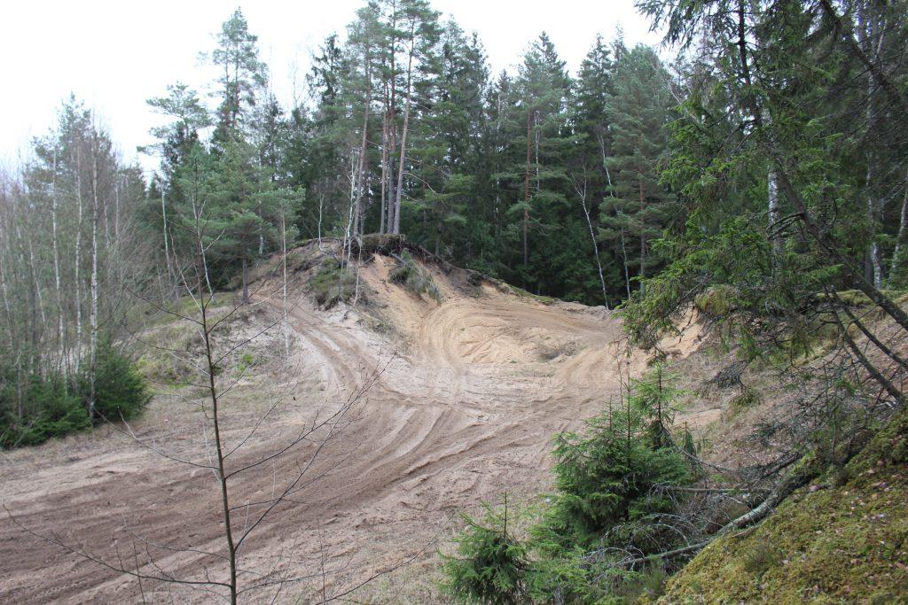 Beveik prieš 40 metų iš Palangos papludimių suvežtas mazutu užterštas smėlis paskubomis buvo laidojamas netoli Laukžemės kaimo esančiame miškelyje.