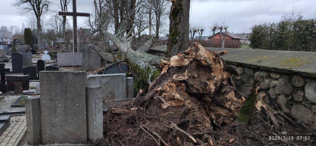 """Uraganas """"Laura"""" negailestingai išniokojo Darbėnų kapines. Facebook nuotr."""
