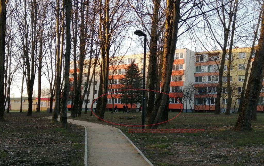 Prieš savaitę vieno kretingiškio užfiksuotas jaunimo būriavimasis Kretingoje, keliantis pavojų aplinkinių sveikatai.