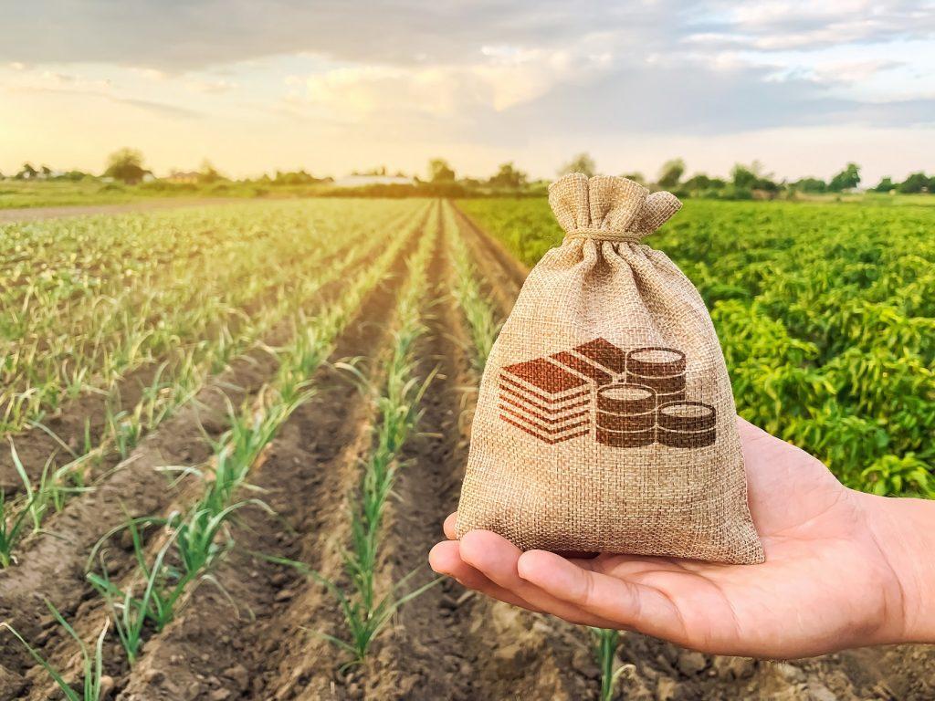 Siekdamas sumažinti koronaviruso COVID-19 neigiamas pasekmes verslui, Žemės ūkio paskolų garantijų fondas teikia paramą žemdirbiams ir kaimo vietovėse veikiančiam smulkiajam bei vidutiniam verslui.