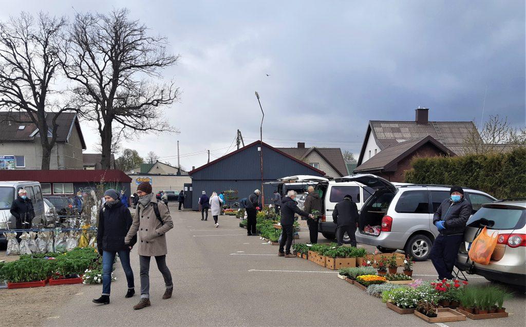 Praėjusį šeštadienį ir trečiadienį Kretingos turguje jau vyko prekyba sodinukais, bet prekiauti skintomis gėlėmis vis dar buvo draudžiama. Nerijaus Tertelio nuotr.