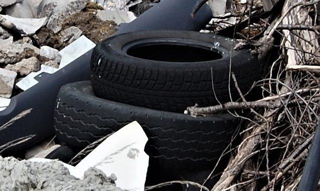 Neatsakingi automobilių savininkai nebenaudojamų padangų atsikrato tiesiog pakelėse ar miškuose. Autorės nuotr.