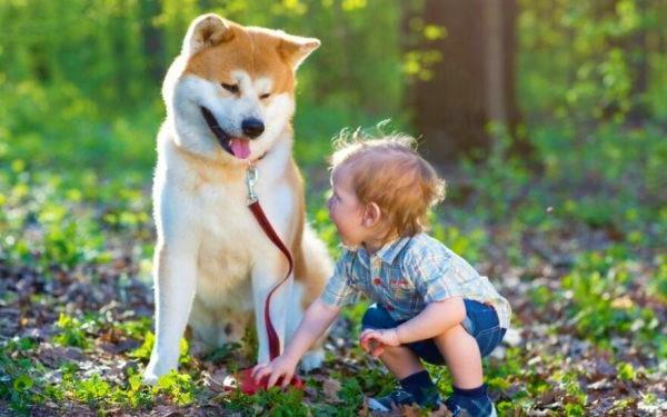 """""""Kai kurie tėvai leidžia mažamečiams vaikams žaisti su šunimis. Tokie vaikai dažniausiai serga, nespėja susidoroti su įvairiomis bakterijomis"""",  – tvirtina Stasys Dimgaila.  © Shutterstock nuotr."""