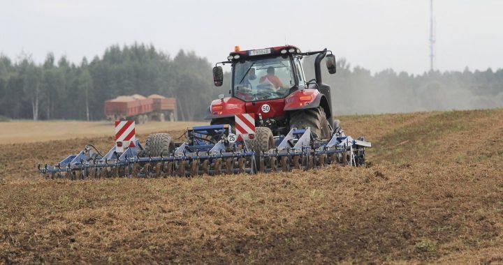Ieškomas žmogus dirbti nedideliame ūkyje. Asociatyvi BNS nuotr.