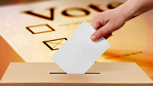 ELECTION-COURT