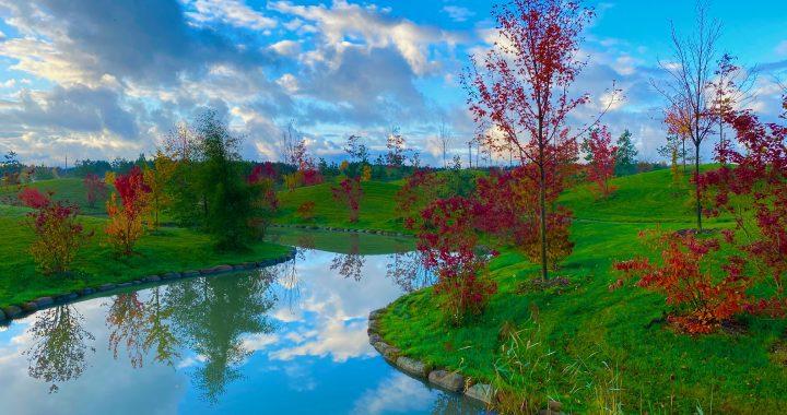 Kaip ruduo atrodo Japonijoje, galima pamatyti ir Kretingoje.
