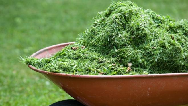 Žaliosios-atliekos-2