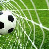 """Darbo pasiūlymas: Viešoji įstaiga """"Minijos futbolo akademija"""" ieško direktoriaus"""
