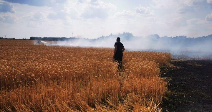 Pirmadienį gaisras suniokojo du trečdalius Nasrėnų ūkininko derliaus. Kretingos rajono priešgaisrinės tarnybos nuotr.